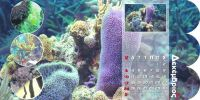 diary-sea-p16