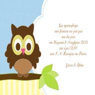 owl-invitation-boy