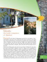 andritsaina-touristikos-odhgos-025