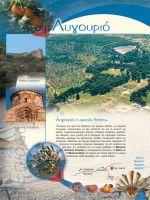 odhgos-nomarhias-argolidas-046